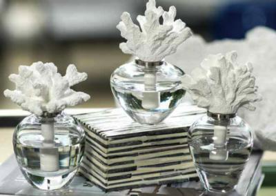 coralperfume